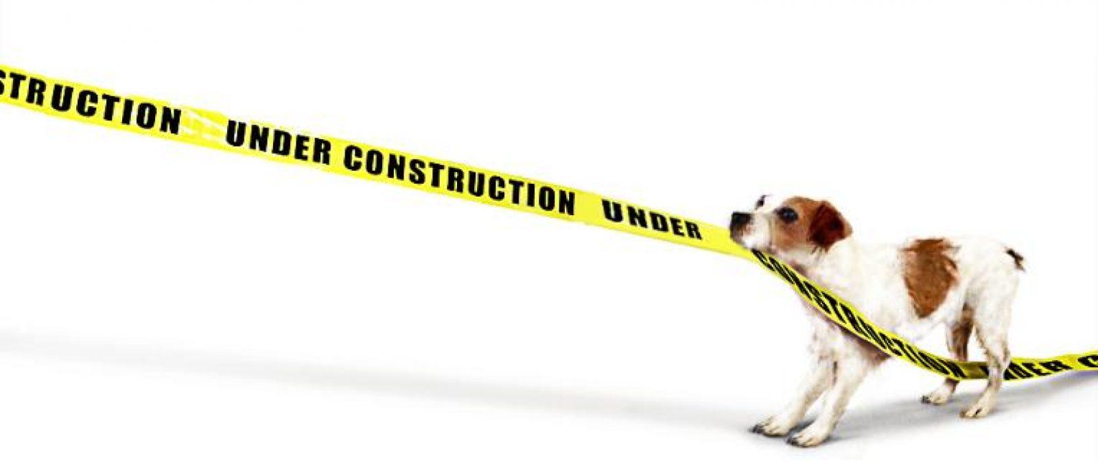 pet_shop_underConstruction